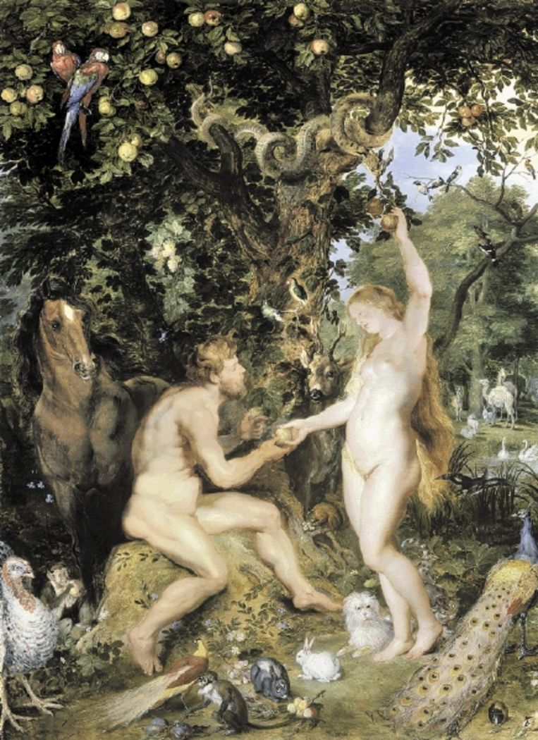 'Het aardse paradijs met de zondeval van Adam en Eva', Jan Brueghel de Oude en Peter Paul Rubens, ca. 1617. ( BEELD MAURITSHUIS) Beeld