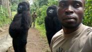 """""""Ja, de foto is écht"""": Virungapark deelt verhaal achter gorillaselfie"""
