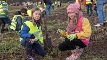 Kinderen planten 2 hectaren bos op Boeygem