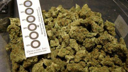 """Jongeman riskeert jaar cel voor de verkoop van 19 kilo cannabis: """"Ben al verslaafd sinds mijn zestiende"""""""