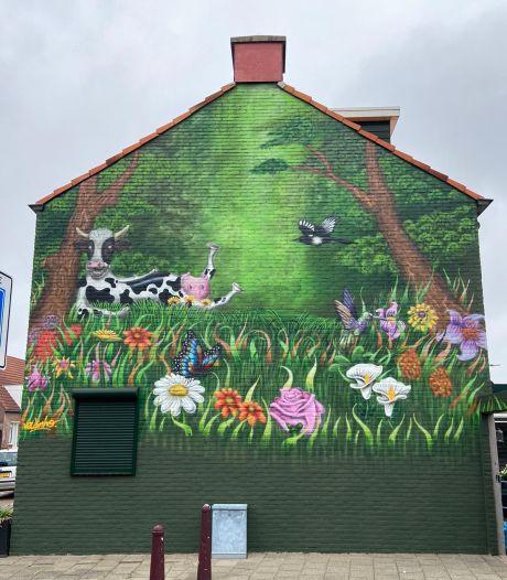 Straatbeeld: Chillende koe (in de Veestraat)