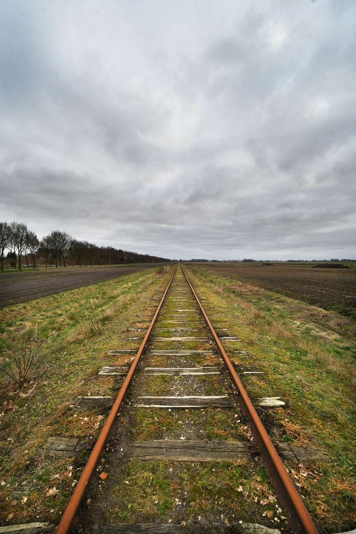 Bij Stadskanaal moet nog een flink stuk spoor (opnieuw) worden aangelegd voordat de Nedersaksenlijn in werking kan treden, maar zeven gemeenten bundelen nu de krachten.