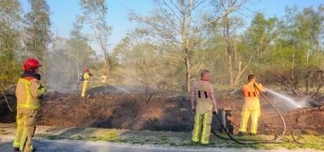 Natuurbrand woedt langs weg in Budel-Dorplein