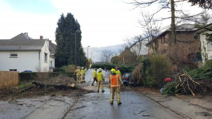 Meer dan 750 interventies voor Brandweerzone Vlaams-Brabant West tijdens eerste voorjaarsstorm