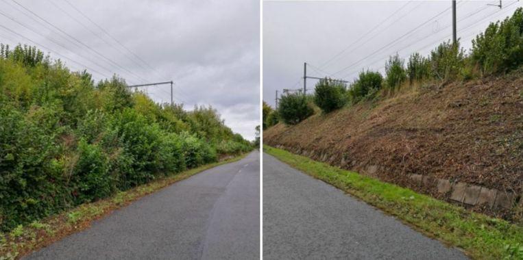De berm voor en na de kaalslag, in de Spoorbermstraat nabij het kanaal Bossuit-Kortrijk