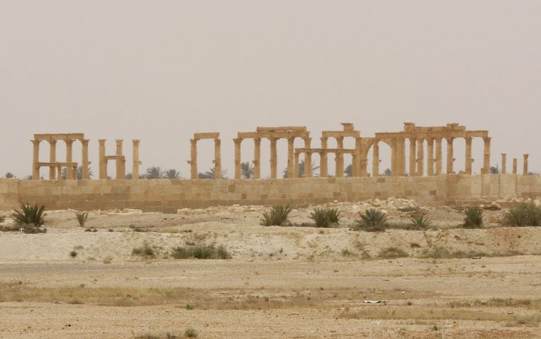 Palmyra. Beeld afp