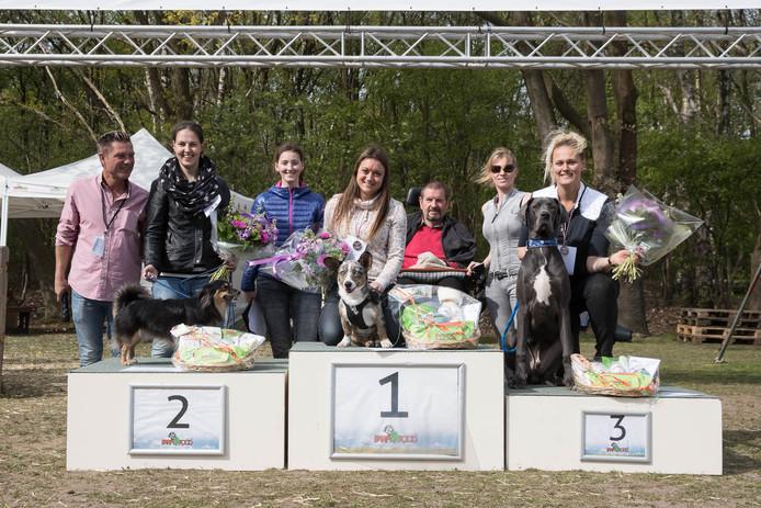 De zeven maanden oude hond van Sarah Schutte uit Reusel is verkozen tot de 'mooiste hond van Nederland'.
