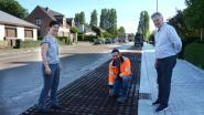 """Eupenlaan wordt eerste klimaatrobuuste wijk: """"Hoger grondwaterpeil en minder wateroverlast door wegnemen van verharding"""""""
