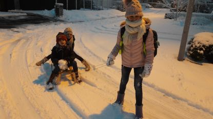 Met de slee naar school... Ook in Jabbeke sneeuwtapijt van 10 cm