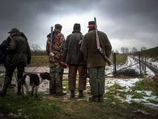 Jagers: vos blijft groot probleem in Maas en Waal
