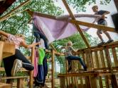 In het Houtdorp Hertme is alles mogelijk: van een garage bouwen tot een konijnenhok