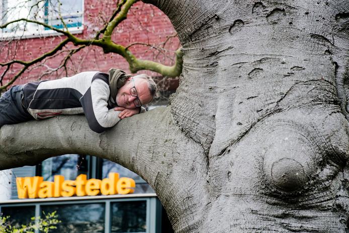 Houtkunstenaar Jos Bregman op de Walstedebeuk. De Beuk wordt volgende week gerooid omdat de boom is aangetast en ziek is. Jos gaat van de boom kunstwerken maken.