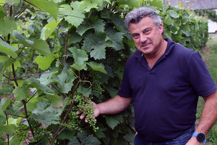 Jan Willekens in de wijngaard.