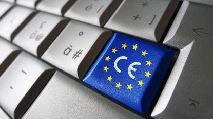 Gemeente telt bijna 500 EU-inwoners, Roemenen zijn meest vertegenwoordigd