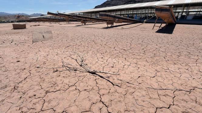 Oogsten, grondwater én jobs drogen op in zuidwesten van VS