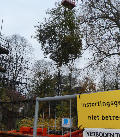 Bomen in de kamers van Zionsburg van Marggraff zijn weer kachelhout
