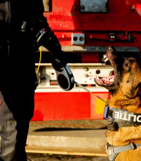Vuurwapen, horloges en grote sommen geld bij politie-invallen Den Haag en Wateringen