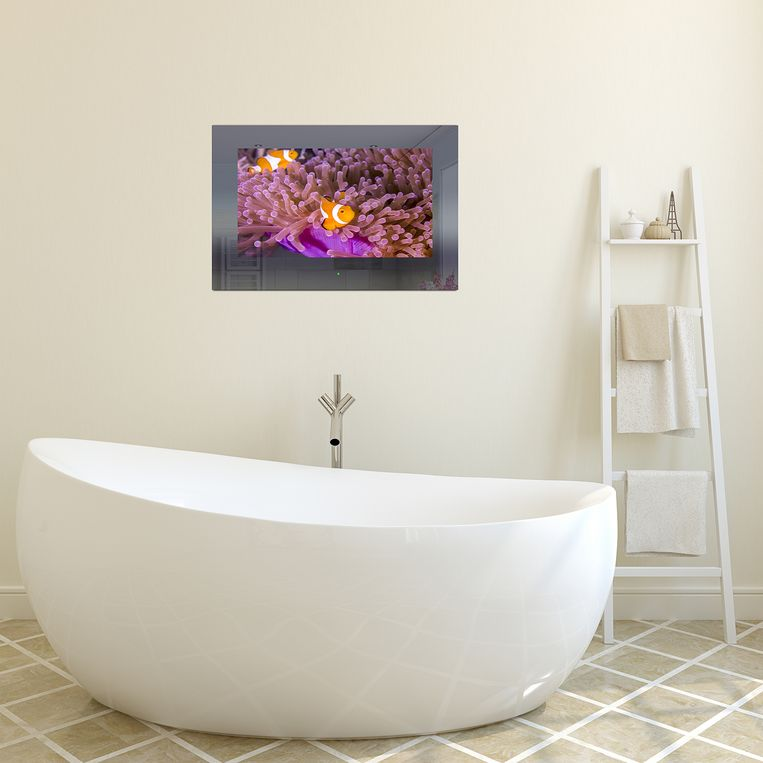 Tv voor vochtige ruimtes met beeldscherm van 81 cm (32 inch), 2.643 euro.
