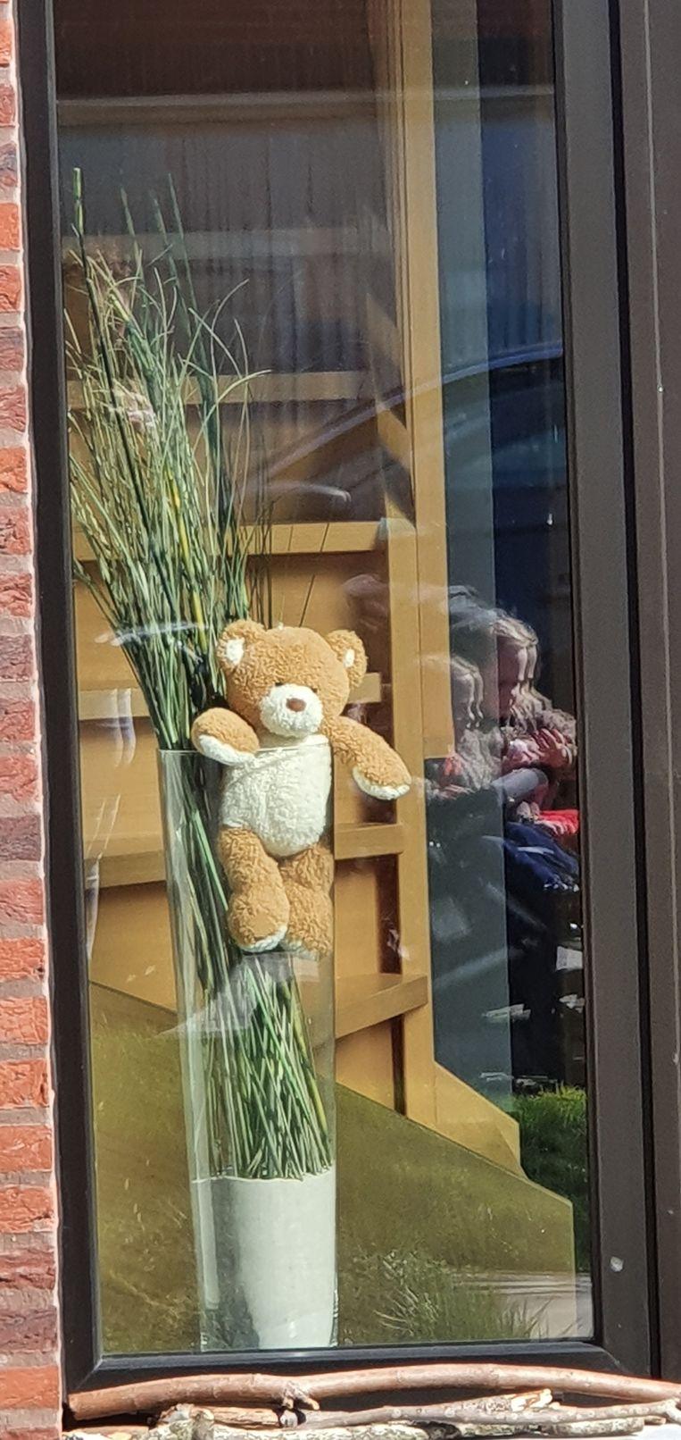 Op verscheidene plaatsen in de wijk Buizelhoek in Hoogstraten verschijnen knuffels voor de ramen.