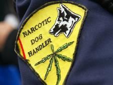 Plaidoyer pour la décriminalisation du cannabis