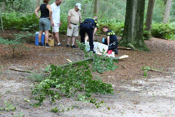 De serene picknick kwam tot een abrupt einde toen de tak naar beneden viel.