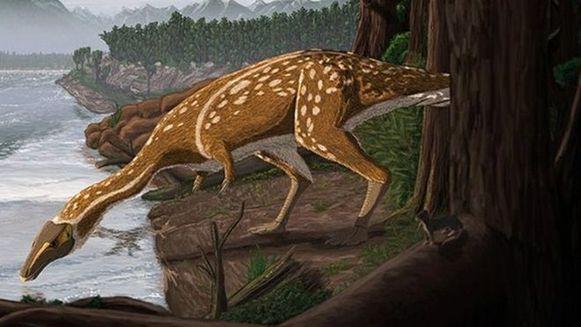 Artistieke impressie van een Elaphrosaurus.
