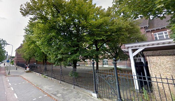 Bomen aan Roosendaalse Nieuwstraat in 2016. Foto Google maps