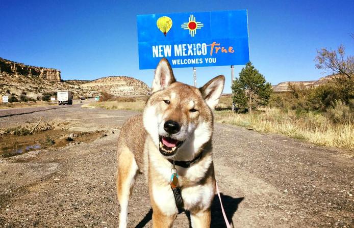 Mura bij de grens van de staat New Mexico.