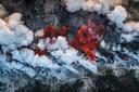 De winnaar in de categorie 'Earth Environments'. Roodgloeiende lava van de Kīlauea-vulkaan kookt onmiddellijk de koele Stille Oceaan waar ze elkaar ontmoeten aan de Hawaiiaanse kust. Terwijl de helikopter van fotograaf Luis langs de kustlijn vloog, scheidde een plotselinge verandering in windrichting de stoompluimen om de vurige rivier te onthullen.