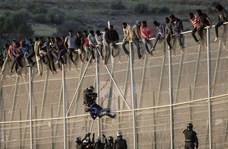 Melilla - 15 oktober 2014. De Spaanse Guardia Civil haalt migranten van het hek dat de Spaanse enclave Melilla scheidt van Marokko Beeld Samuel Aranda