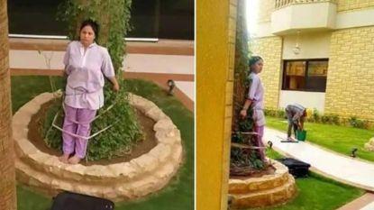 Saudi bindt huismeid als straf vast aan boom