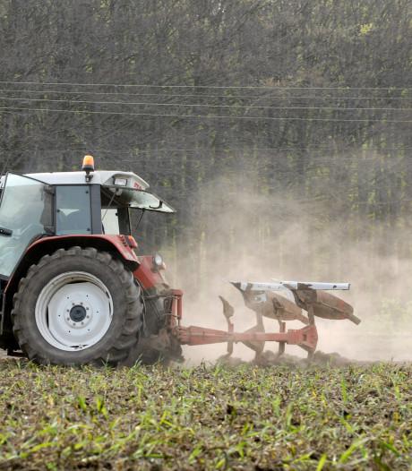 Boerenbedrijf in Veluwezoom verdwijnt in rap tempo