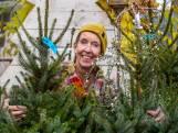 De muren komen op ons af en daarom kopen we in oktober al een kerstboom: 'Het is een rare tijd'