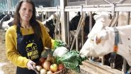 De Buurderij start ook op in Rijkevorsel: lokale producten kunnen afgehaald worden in Sint-Jozefkerk