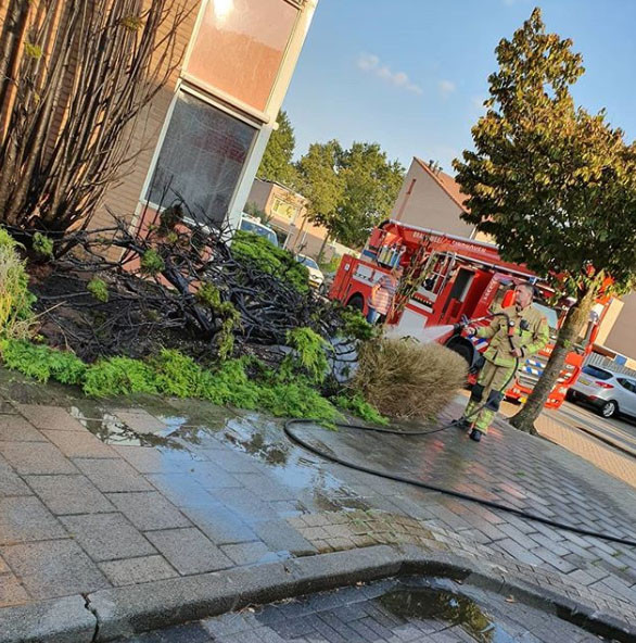 Onkruid wegbranden gaat mis in Eindhoven: ook heg in brand
