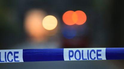 Autobestuurder rijdt twee pony's dood in Waals-Brabant