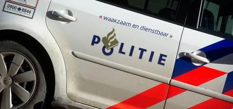 Man vlucht bos in bij politiecontrole langs de A50 bij Epe