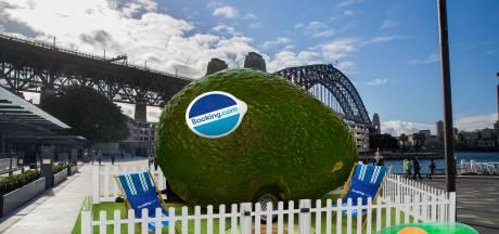 Voor de echte fans: overnacht nu in een enorme avocado