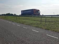 Tientallen geplante struikjes per ongeluk gemaaid in Heijningen
