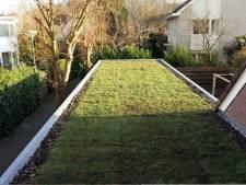 Subsidie toegekend voor 112 groene daken in Zeeland
