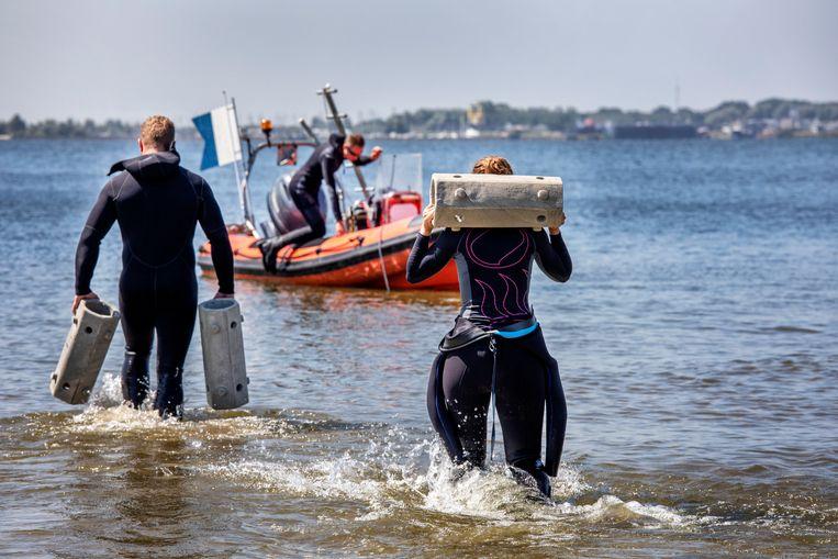 De buizen die op elkaar geklikt het hotel vormen, worden naar de boot gebracht vanwaaruit ze bij de Haringvlietbrug te water worden gelaten. Beeld null
