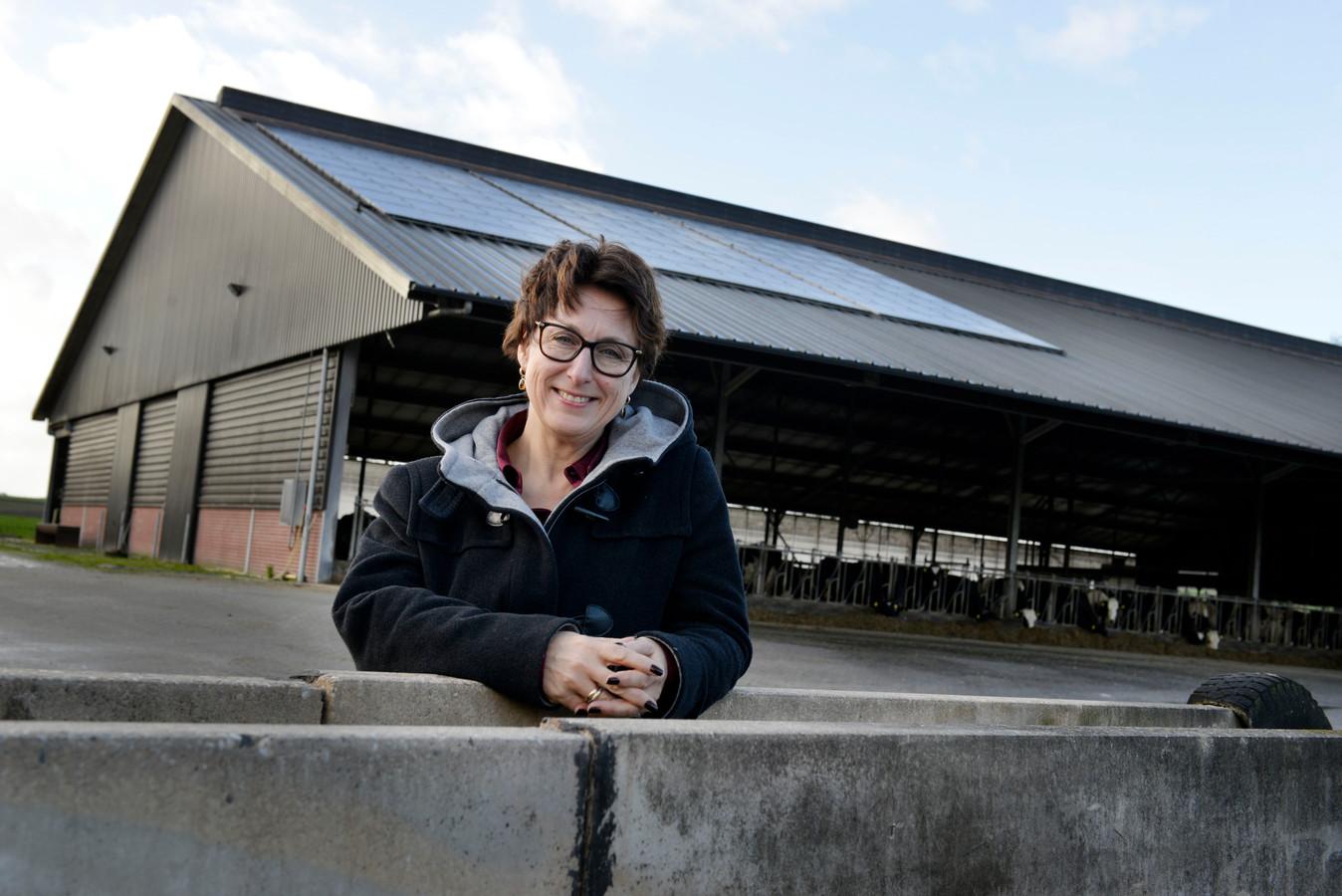 """Bouwien Rutten: """"Ga nu eerst die grote daken met zonnepanelen vol leggen. Ja, zon is minder dan wind, maar 10.000 zonnepanelen tellen wel mee."""""""