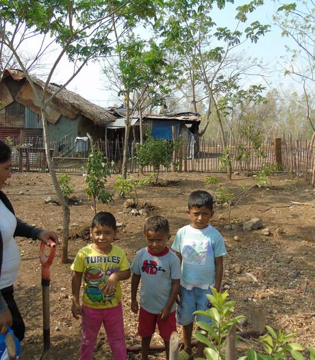 Sallandse oogstgave voor Nicaragua