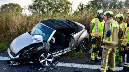 Spookrijder in levensgevaar na stevige klap op snelweg