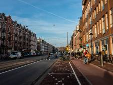 Frederik Hendrikstraat krijgt weer 'echte Amsterdamse straatbomen'