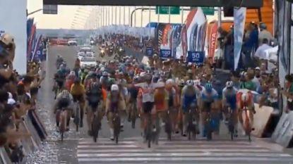 Gaviria is snelste na chaotische sprint in tweede rit van Ronde van San Juan, Allegaert knap vierde