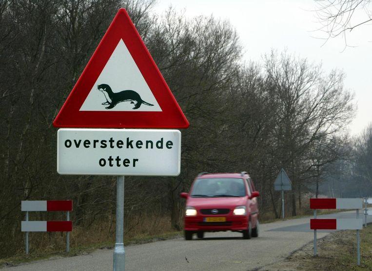 Een verkeersbord waarschuwt voor overstekende otters. Beeld anp
