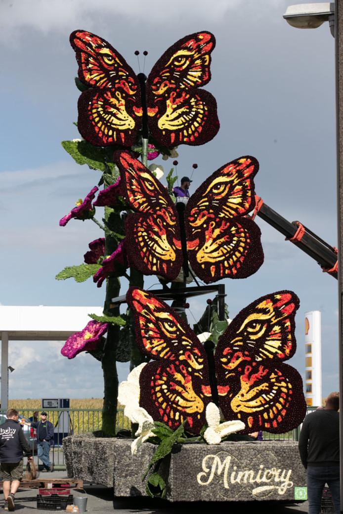 11. In- en uitklappende vlindervleugels van de groep Excellent.