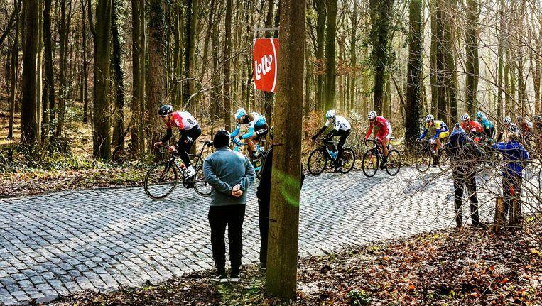 Renners tijdens Omloop het Nieuwsblad op de Bosberg, met in derde positie Dylan van Baarle. Beeld Jiri Buller / de Volkskrant