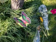 'Bestuurder grasmaaier dacht voor ongeluk dat de kinderen weg waren'